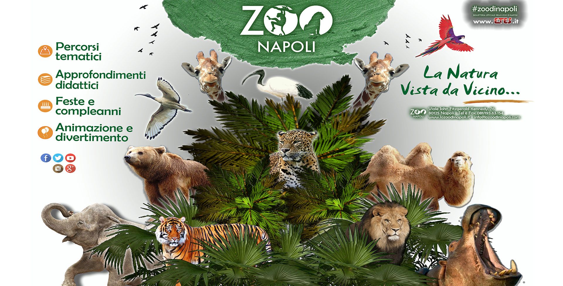 Cip zoo napoli recensioni